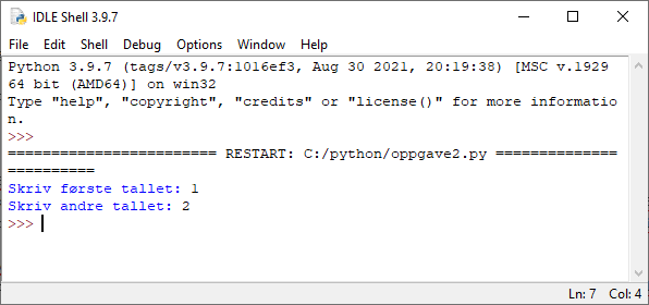 run input python
